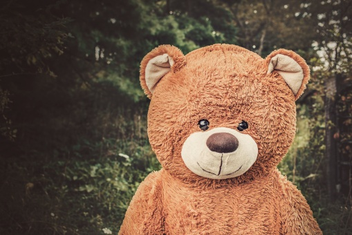 teddybear.gratisography